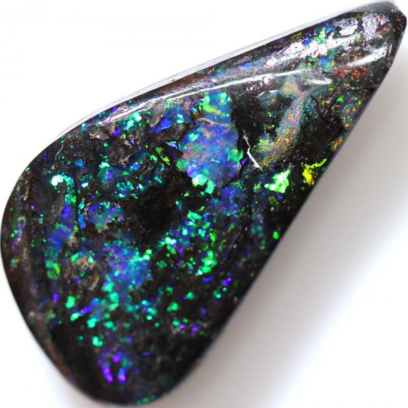 16.42 CTS BOULDER WOOD FOSSIL STONE WELL POLISHED[BMA9373]