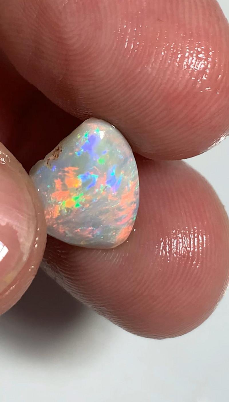 Lovely Bright Multi-colour Dark Opal