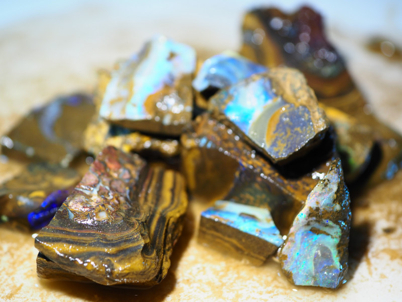 1272CT  CUTTERS QUALITY ROUGH QUEENSLAND BOULDER OPAL (14OPALS)  RR365