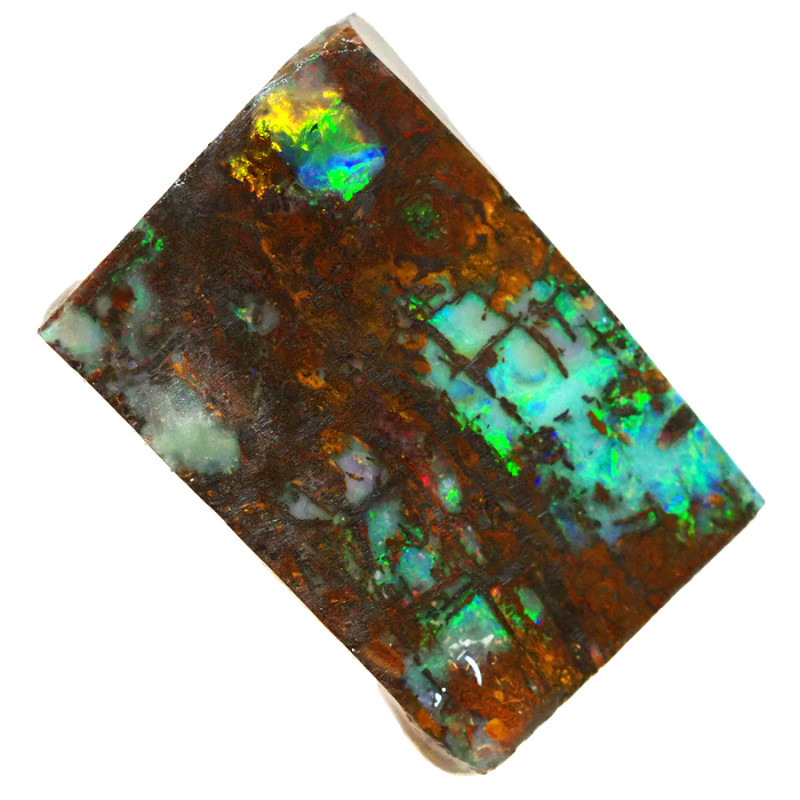 49.5cts Boulder Opal Rough/Rub Pre-Shaped  S1306