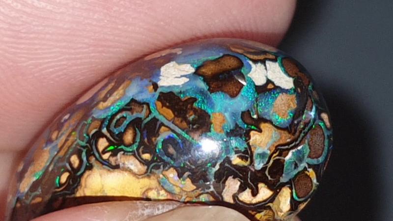 30.6 Ct Yowah nut Opal from Yowah