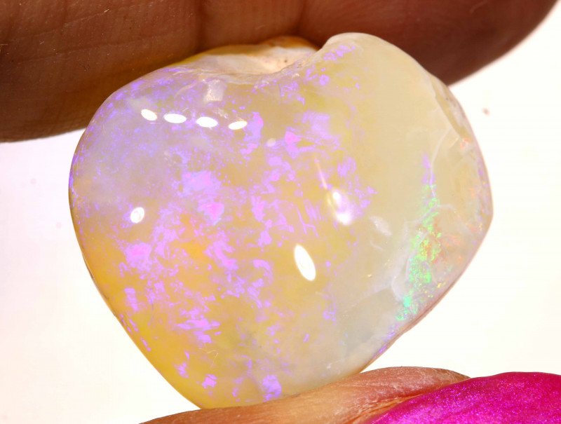 27.15 CTS   OPALISED FOSSIL CLAM SHELL   FO-930