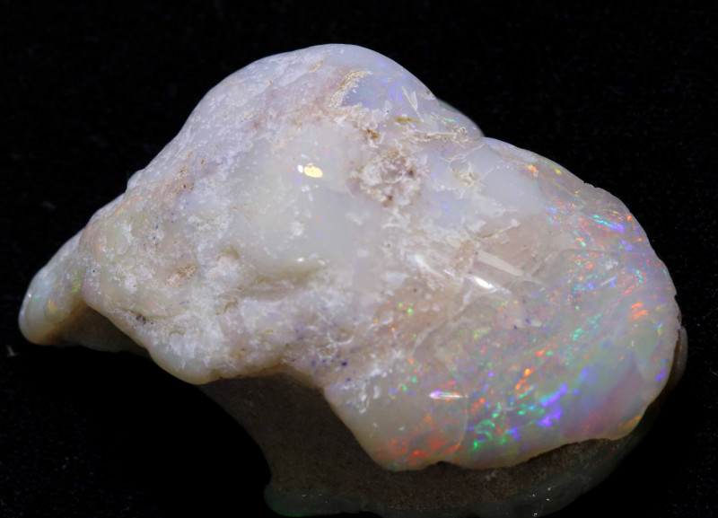 43.85 CTS   OPALISED FOSSIL CLAM  SHELL   FO-985