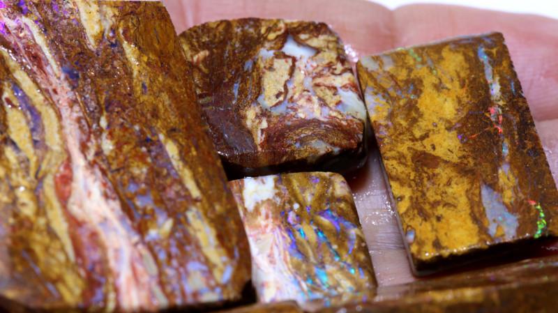 173.40 cts Jundah Boulder Opal Opalized Petrified WOOD PARCEL DT-A2578