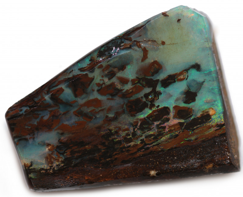 75 CTS WOOD FOSSIL ROUGH  OPAL-MINED IN JUNDAH [BY9148]