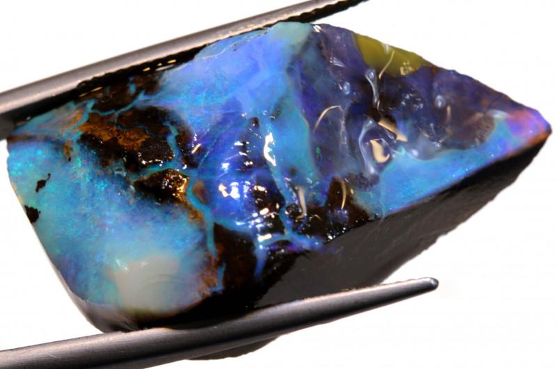 52.75 cts Australian Boulder Opal Rub DO-61