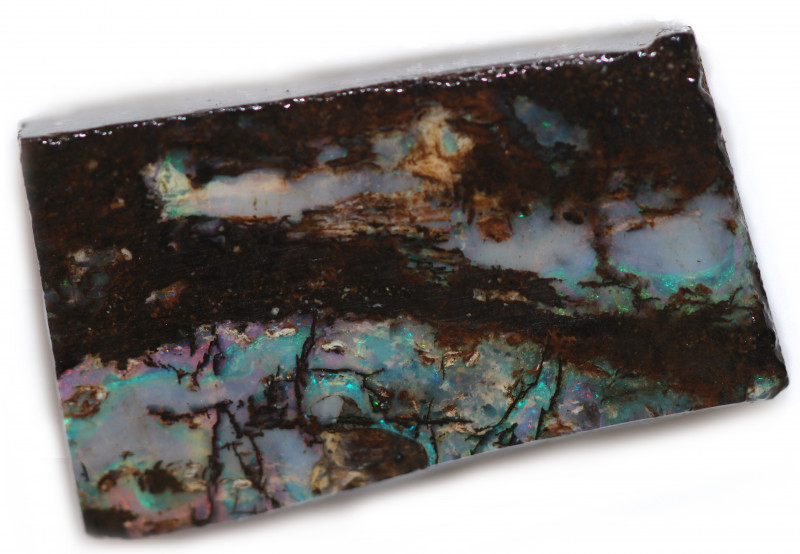 44 CTS WOOD FOSSIL ROUGH OPAL-MINED IN JUNDAH [BY9269]