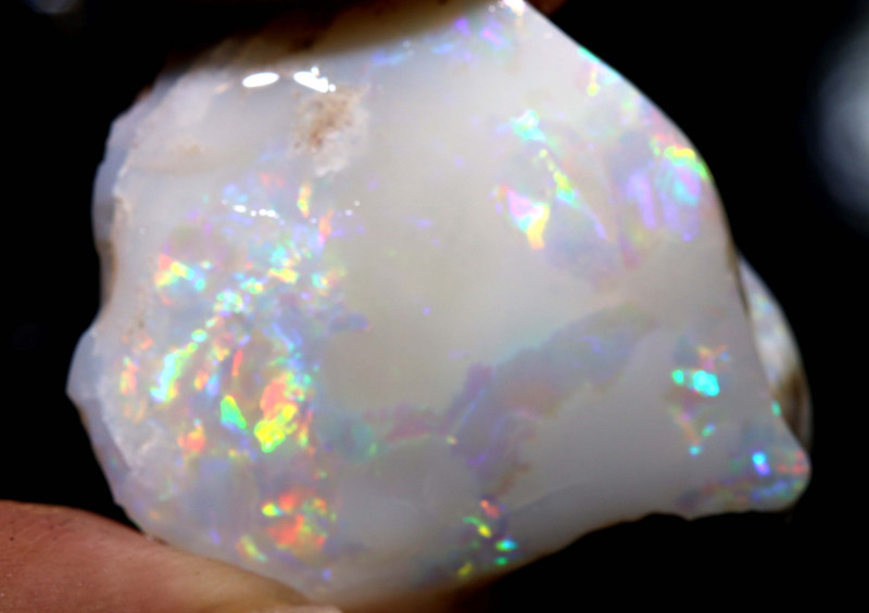 42.15 CTS    CLAM SHELL OPALISED FOSSIL  FO-1170