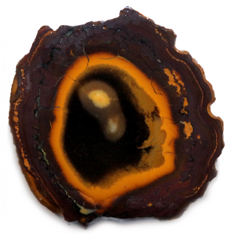44 CTS YOWAH OPAL NUTS BLACK CENTER   [BY9657]