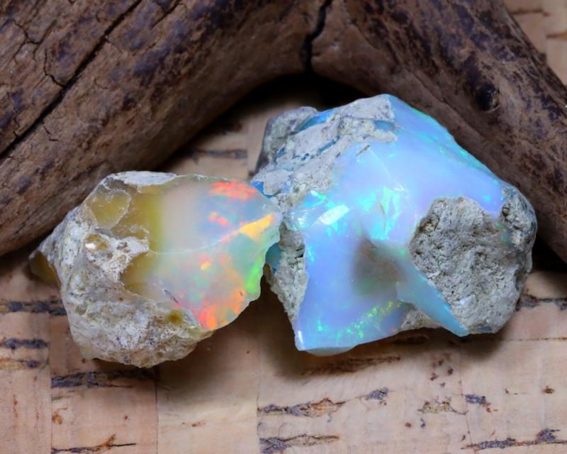 32.90Ct Bright Color Natural Ethiopian Welo Opal Rough DT0375