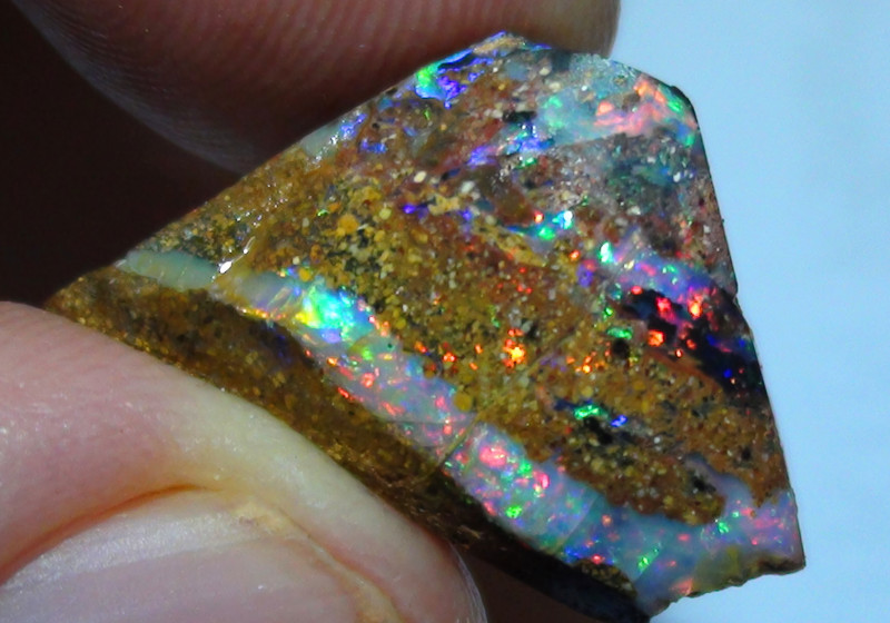 12.75 ct Rare Gem Multi color Queensland Boulder Opal Wood Fossil Rough