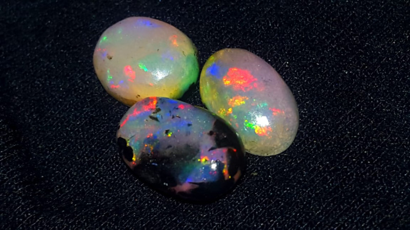 6.360 CRT 3 PCS BEAUTIFUL TRANSITION PLAY COLOR INDONESIAN OPAL WOOD FOSSIL