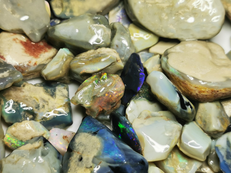 Rough Opal Lot 2,400 cts Black Opals Lightning Ridge BORD061020
