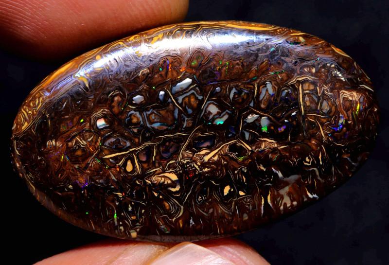 Koroit Boulder Opal Stone  DO-707 - downunderopals