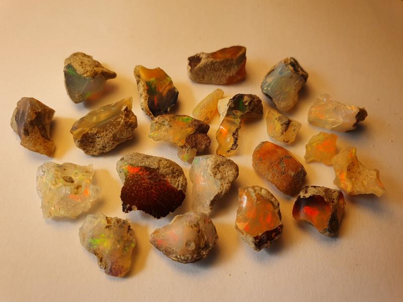 48.4ct lot Cutting Rough Noobie Welo Opal