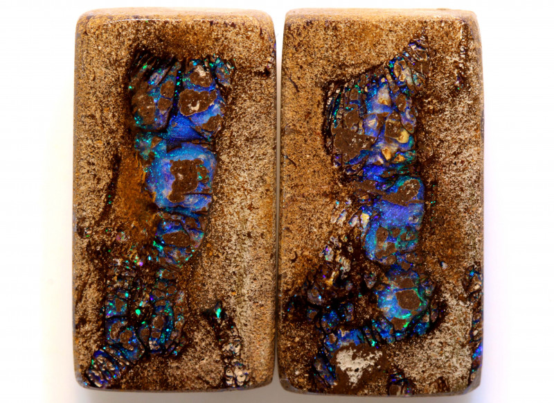 29.8 CTS   WOOD FOSSIL OPAL PAIR  NC-9231